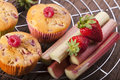 Strawberries rhubarb and muffins two whole fresh strawberry on a cake wire rack Royalty Free Stock Photo