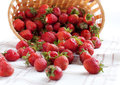 Strawberries sprinkled on the surface Stock Image