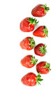 Strawberries in two rows in isolation top view background of Royalty Free Stock Image