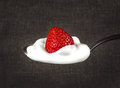 Strawberries in white cream on a silver spoon Royalty Free Stock Photo