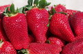 Strawberry background close up image Royalty Free Stock Images