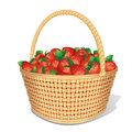Strawberry Basket Royalty Free Stock Photos