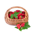 Strawberry in basket on white background wicker Royalty Free Stock Photo
