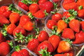 Strawberry baskets. Ripe strawberries in sunshine Royalty Free Stock Photo