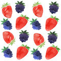 Strawberry and blackberry pattern Stock Image