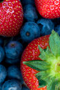 Strawberry and bluberry series Royalty Free Stock Photo
