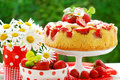 Strawberry cake on table in the garden Stock Photo
