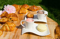 Strawberry and chocolate gelato with pastries croissants macaroons on a wooden table in a garden picnic setting Stock Image