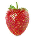 Strawberry close-up Royalty Free Stock Photo