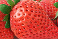 Strawberry close-up macro Royalty Free Stock Image