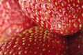 Strawberry closeup Stock Images
