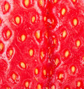Strawberry closeup with shallow DOF Stock Photos