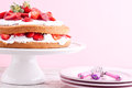 Strawberry cream cake on a pink background Royalty Free Stock Photos