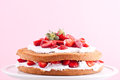Strawberry cream cake on a pink background Stock Photography