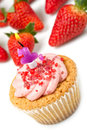 Strawberry cupcake with candle Royalty Free Stock Photos