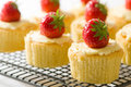 Strawberry Cupcakes Royalty Free Stock Image