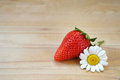 Strawberry and daisy flower on wooden background Stock Image