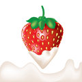 Strawberry dipped in cream and splash isolated Stock Image
