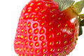 Strawberry in extreme close-up Royalty Free Stock Photo