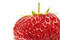 Strawberry extreme close-up Royalty Free Stock Photo