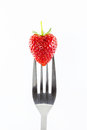 Strawberry on a fork against Royalty Free Stock Photo