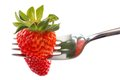 Strawberry in fork isolated on white background Royalty Free Stock Photography