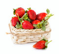 Strawberry fruit fresh ripe on white Stock Image
