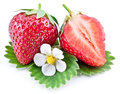 Strawberry fruit with slice and flower isolated on a white Royalty Free Stock Images