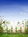 Strawberry garden the beautiful with and white fence Royalty Free Stock Photos