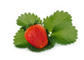 Strawberry with green leaf isolated on white Royalty Free Stock Photo