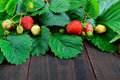 Strawberry and green leaves on a dark wooden board. Food background