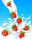 Strawberry having fun in milk Royalty Free Stock Photo