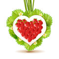 Strawberry heart Royalty Free Stock Photos