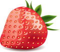 Strawberry isolated on white photo-realistic Stock Photo