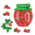 Strawberry jam jar and strawberries, isolated on white. Vector food illustration Royalty Free Stock Photo