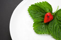 Strawberry with leaves on the white plate red Stock Image