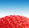 Strawberry macro Royalty Free Stock Photos