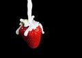 Strawberry Making A Splash. Isolated on black background. Royalty Free Stock Photo