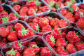 Strawberry market Stock Photography