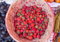 Strawberry mini in rattan basket Royalty Free Stock Photo