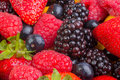 Strawberry Among Mixed Berries Royalty Free Stock Photo