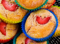 Strawberry Muffin Cup Cakes Stock Image