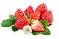 Strawberry. Organic strawberries with leaves and plant flower isoalted on white Royalty Free Stock Photo