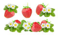 Strawberry over white background Royalty Free Stock Photo