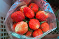 Strawberry in pack fresh from plant Royalty Free Stock Photos