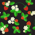 Strawberry pattern black backgrounds trawberry back fruits Royalty Free Stock Image