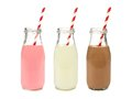 Strawberry regular and chocolate milk in bottles isolated with striped straws on white Stock Photography