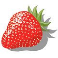 Strawberry ripe berry strawberries on a white background Royalty Free Stock Photos