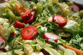 Strawberry salad detail of fresh Royalty Free Stock Photos