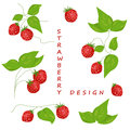 Strawberry set of isolated elements for design Stock Image